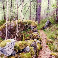 Wanderwege rund um das Gruppenhaus in Norwegen Omlid.
