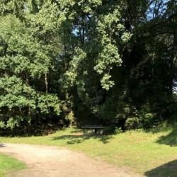 großes Außengelände mit Wald und Tischtennisplatte im Kinderfreizeitheim Lehringen