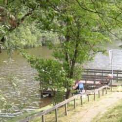 NLAP Badestelle nahe der Gruppenunterkunft De Appelhof in Holland