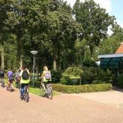 Die Umgebung rund um das Ferienhaus Nijsingh in den Niederlanden.