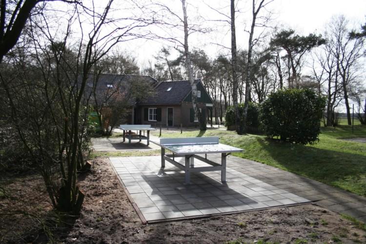 Outdoor Tischtennis im niederländischen Gruppenhaus de Repelaerhoeve am Waldrand.