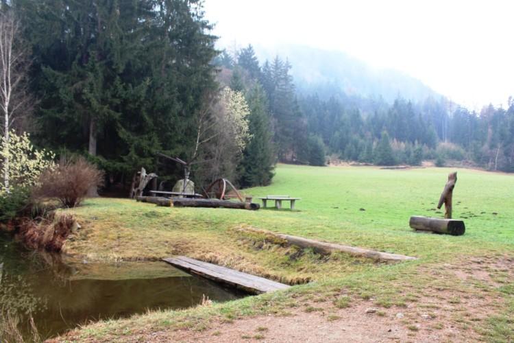Wald am Jugendfreizeitheim Graahof in Südtirol