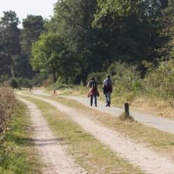 Ausflugsziele im Freizeitheim Reggehoeve in den Niederlanden.